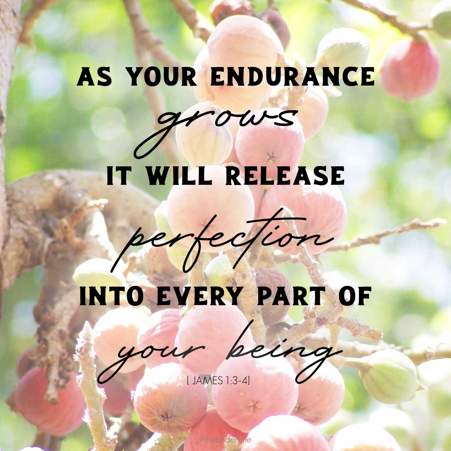 As endurance grows it releases perfection