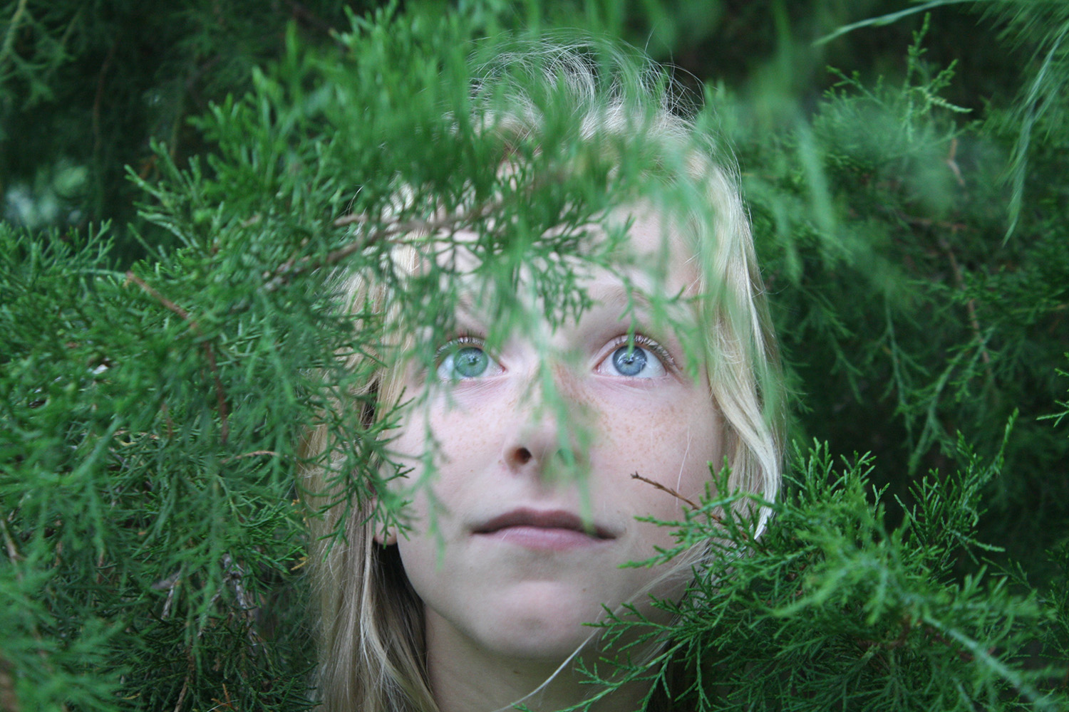 Girl hidden in pine branches via Unsplash